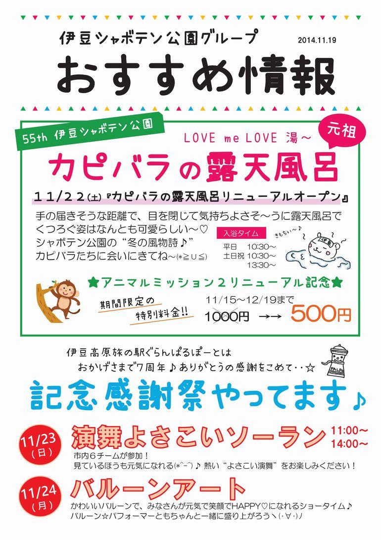 おすすめ情報2014.11.19