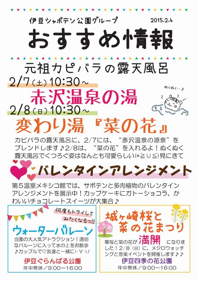 おすすめ情報2015.2.4