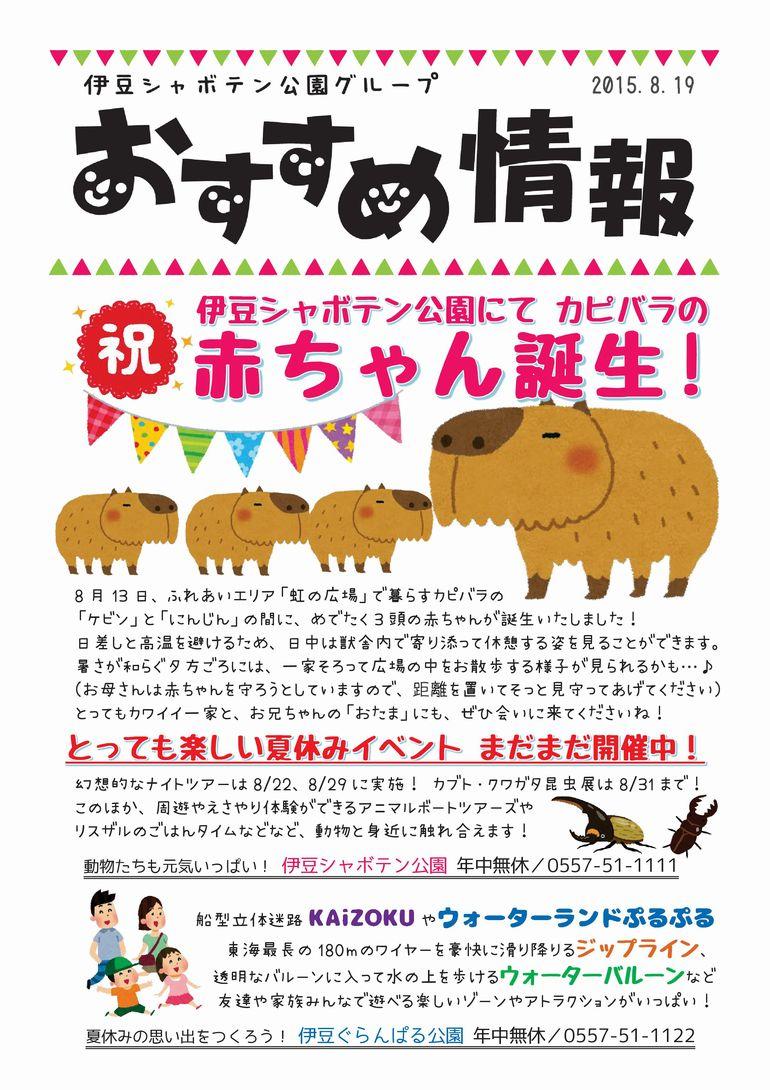 おすすめ情報2015.8.19